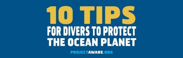 10 Συμβουλές προς τους δύτες για την προστασία του υποβρύχιου κόσμου