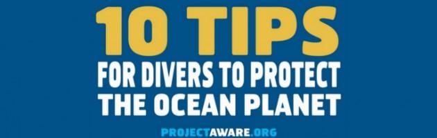 10 Συμβουλές προς τους δύτες για την προστασία του υποβρύχιου κόσμου slide