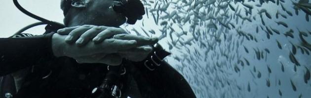 22-reasons-scuba