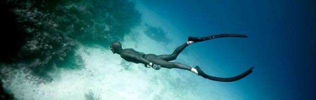 freedive-milestones-header